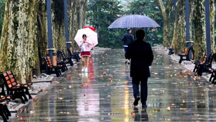 上海今天阴到多云 时有阵雨