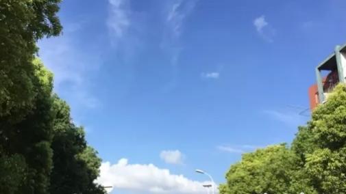 上海今天气晴好 最高气温29℃ 明后天多云