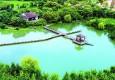 阅读上海100胜 79 | 嘉北林深 稻浪垛林河网绘出梦里水乡