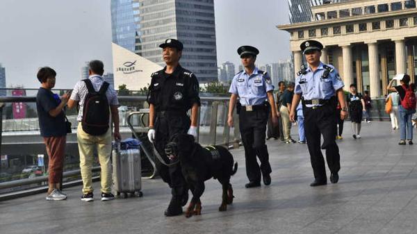 公务汪来了!91条警犬现身浦东12处客流密集地开展巡逻