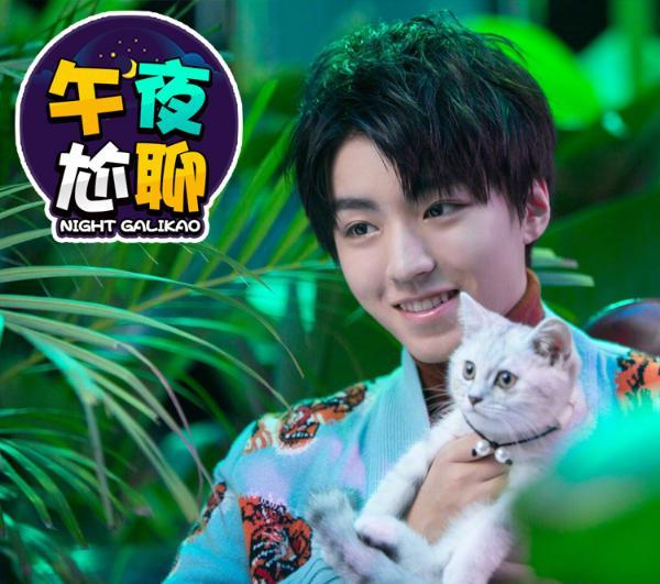 王俊凯、黄子韬、杨幂...娱乐圈最耿直艺人是谁?