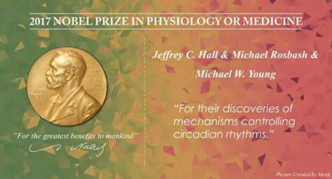 2017年诺贝尔生理学奖告诉你 正常作息比你想象的更重要