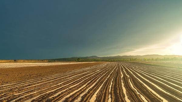 土地承包期延长30年将给农民带来什么