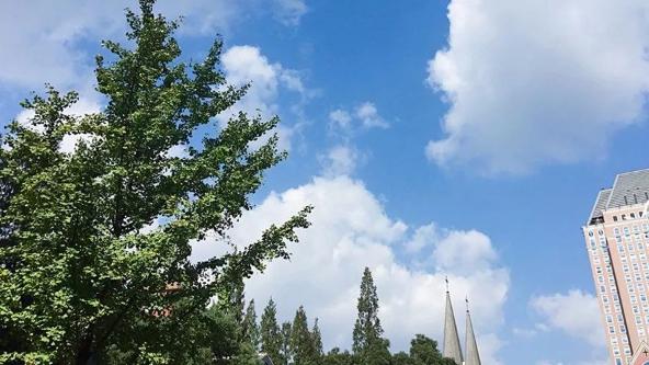 """""""精细版""""上马天气预报来了!明天阴到多云最高18℃"""