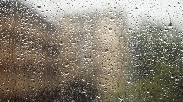 今日申城阴到多云有阵雨 周末将迎入秋以来最强冷空气