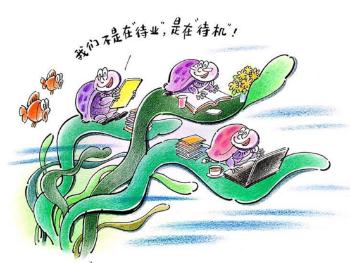 """独家述评丨小""""海龟""""为何宁愿当""""海带""""?"""