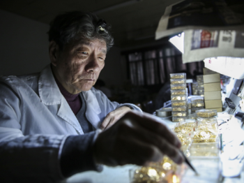 老字号新气象丨嘀嗒六十年,上海牌手表再出发